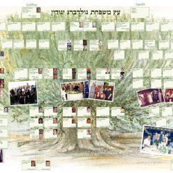 3-1gilkis-sefton-tree6